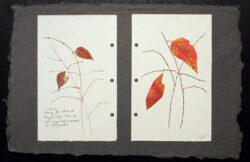 Winter Leaf – Floyd's Fork