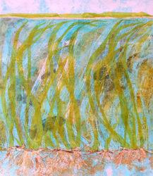 Estuary Eel Grass