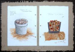 Spring on Ploughshares Farm – Potato Planting